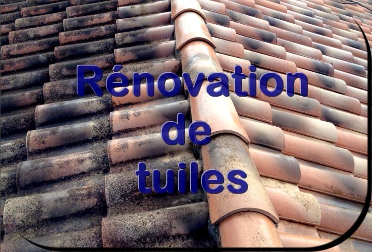 Renovation tuile 1